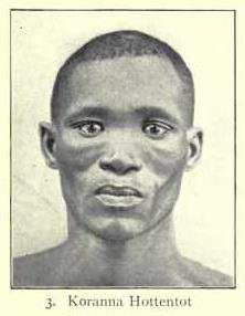 Khoikhoi man, Hottentot type