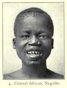 Central African man, Pygmy type