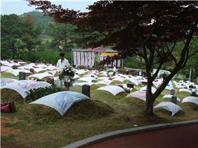 Mangwol-dong cemetery (2008)