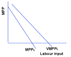 The Marginal Physical Product of Labour