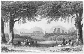 view of city having temple towers seen through two trees