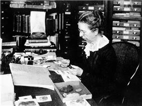 Mary Jane Rathbun working with crab specimens.