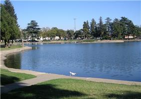 Ellis Lake, Centerpiece of the city.