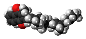 Space-filling model of the menatetrenone molecule