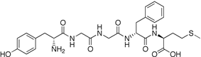 Chemical structure of Met-enkephalin.