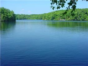 Tranquil blue pond