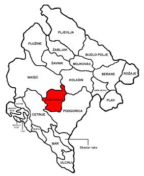 Danilovgrad municipality
