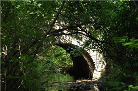 Bridge No. 1860
