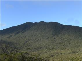Mount Hamiguitan.