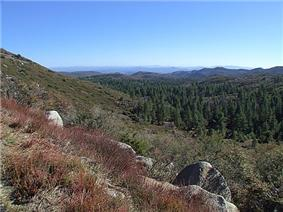 Cleveland National Forest near Mount Laguna.