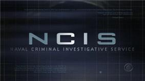 The series' opening logo