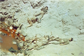The boodies of a number of Asian soldiers wearing khaki and webbing lie dead in a bomb crater filled with water which is coloured red.
