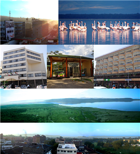 Clockwise: Sunrise in Nakuru, Flamingos in Lake Nakuru, Avenue Suites Hotel, Baboon Cliff, Nakuru Skyline, Merica Hotel and entrance to Lake Nakuru National Park.