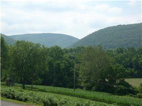 A Nippenose Township vista