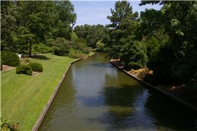 Norfolk Azalea Garden