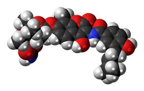 Space-filling model of the novobiocin molecule