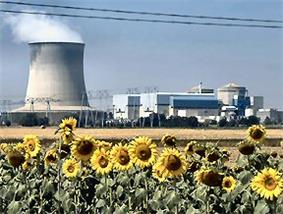 Photograph featuring sunflowers in front and a plant on the back. The plant has a wide smoking chimney with diameter comparable to its height.