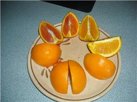 Sectioned oranges on a plate
