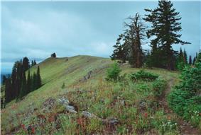 A trail atop Oregon Butte.
