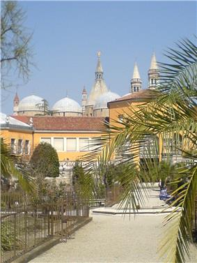 The Botanical Garden of Padova today; in the background, the Basilica of Sant'Antonio.