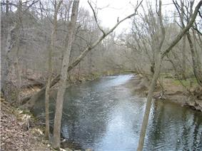 A stream curves between two banks lined with bare trees