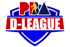 The official logo of the PBA Developmental League.