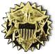PHSCC Lapel Pin