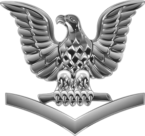 A single silver eagle, its beak facing to its right, perched upon a silver down-ward facing chevron.