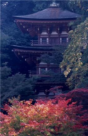 Wooden pagoda with white walls and vermillion red beams.