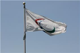 A flag with three red, gree, and blue swooshes on a white background.  It is attached to a flag pole and is framed by a blue sky
