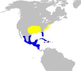Map showing breeding and winter range of P. ciris