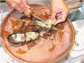 Photo of opened oyster in bowl with person using a knife to remove the pearl