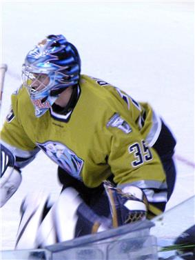 An ice hockey player stands partially crouched, while facing to the left of the camera. He is wearing a black and blue helmet and a yellow uniform with a large sabertooth head on his chest.