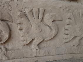 Pelican in chan chan