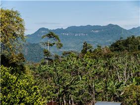 PenasBlancas, part of the Bosawas Reserve, Jinotega Department, Nicaragua.jpg