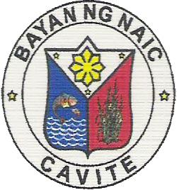 Official seal of Naic