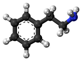 Ball-and-stick model of phenethylamine
