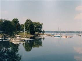 A marina with several sailboats