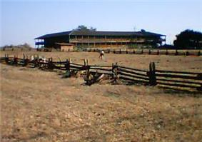Photograph of the Petaluma Adobe, a broad, low, two-story building with wide verandas amidst open grasslands.