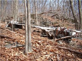 wreckage in the forest