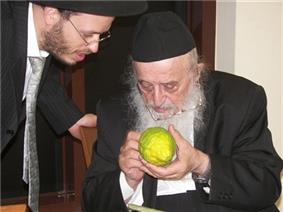PikiWiki Israel 9435 Rabbi Bergman examines a students citron.jpg
