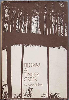 Book cover showing two photographs of trees blended together in the darkroom - the upper image is in North Carolina and the bottom image are yellow pines in Florida and upside down and was meant to be interpreted by the viewer . . . floating forest, etc.