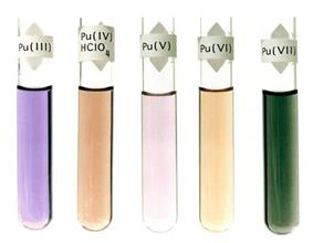 Five fluids in glass test tubes: violet, Pu(III); dark brown, Pu(IV)HClO4; light purple, Pu(V); light brown, Pu(VI); dark green, Pu(VII)