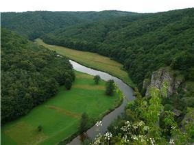 Thaya in Podyjí National Park