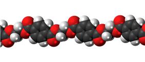 PET polymer chain