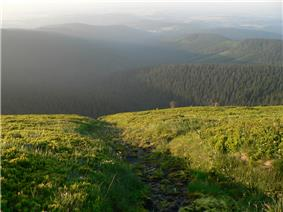 Source of the Moravice is located high in the Hrubý Jeseník Mountains