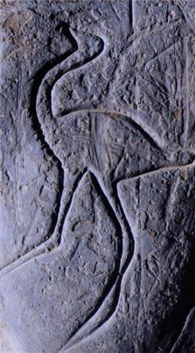Prehistory-draa5.jpg