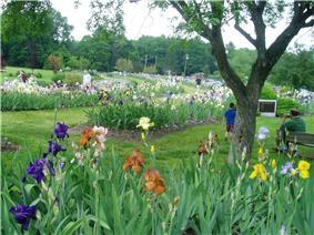 Presby Memorial Iris Gardens Horticultural Center