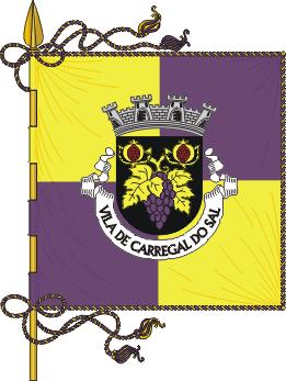 Flag of Carregal do Sal