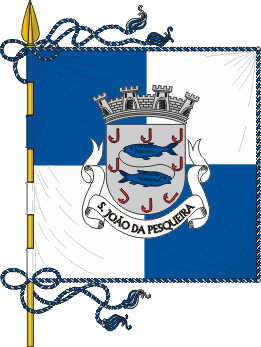 Flag of São João da Pesqueira